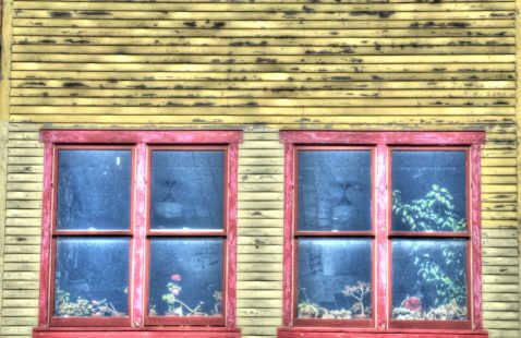 What to Look for When Getting a Window Replacement